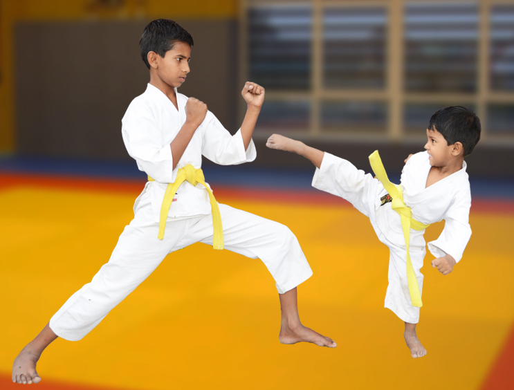 Image result for shotokan karate india